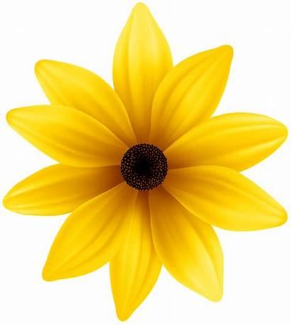 Yellow Flower Flowers Clipart Clip Background Transparent
