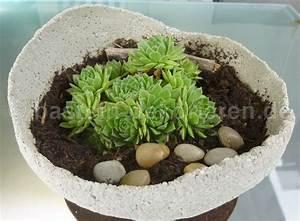 Deko Für Terrasse : selbst gemachte betonkugel bepflanzt mit dachwurz deko f r den garten oder die terrasse ein ~ Orissabook.com Haus und Dekorationen