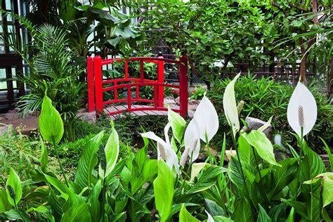 Garten Der Schmetterlinge Im Fürstlichen Schlosspark Sayn