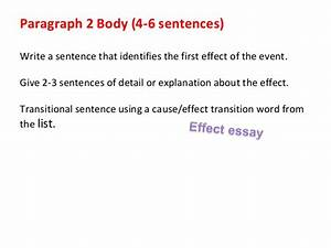 Essays On English Literature Against Animal Abuse Essay English Essay Friendship also English Narrative Essay Topics Stop Animal Abuse Essay Biology Thesis Topics Stop Animal Abuse  Example Of A College Essay Paper
