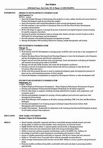 Development Coordinator Resume Samples