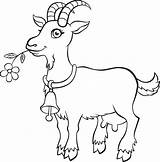 Goat Coloring Animals Animal Goats Printable Farm Boer Drawing Sheets Getcolorings Turkey Easter Shape sketch template