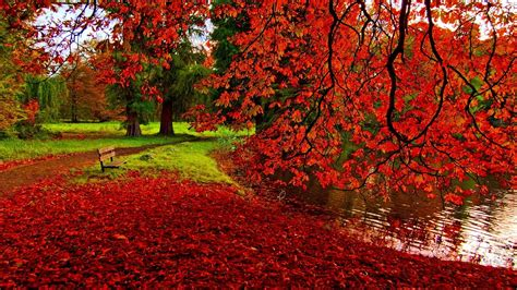 Desktop High Quality Fall Backgrounds by Fall Desktop Wallpapers Backgrounds 64 Images