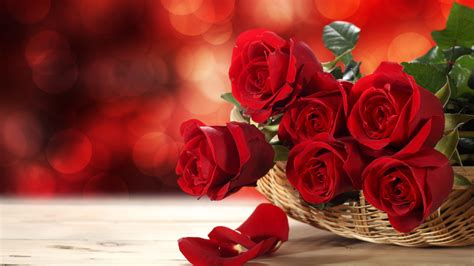 red roses  valentines dayquotes happy rose day greeting