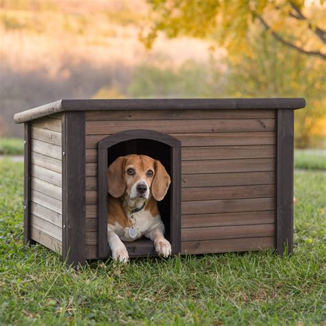 boomer george log cabin dog house  stainless steel