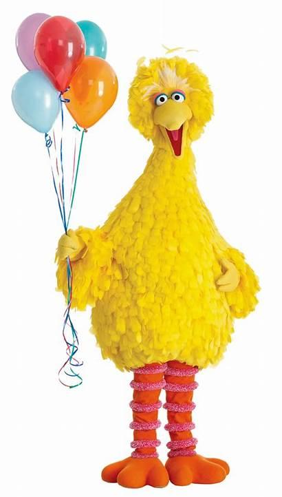 Bird Birthday Sesame Street Wishes Happy Belated