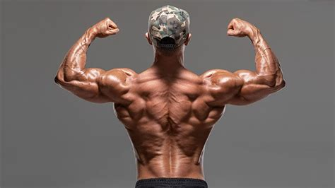 The intrinsic muscles are named as such because their embryological development begins in the back, oppose to the superficial and intermediate within this group of back muscles you will find the latissimus dorsi, the trapezius, levator scapulae and the rhomboids. Anatomical Name Of Lower Back Muscles / Transversospinales ...