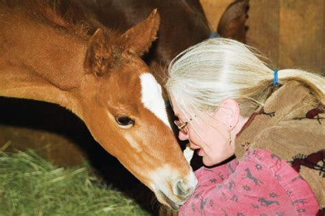 mare foal horse heat mares care health breeding cycles riding expert equisearch managing