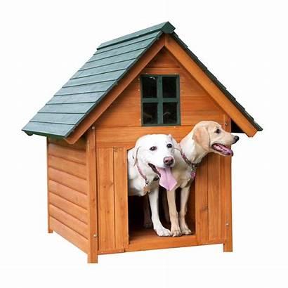 Dog Clipart Transparent Doghouse Kennel Sitting Dingo