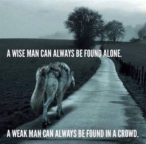 Lone Wolf Meme - best 25 lone wolf quotes ideas on pinterest