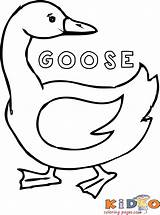 Coloring Geese Goose Sheets Printable Popular sketch template