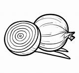 Onion Coloring Clip Vector Colouring Pages Template Illustrations Children Crab Illustration Similar sketch template
