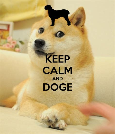 How To Make Doge Meme - doge meme wallpaper wallpapersafari