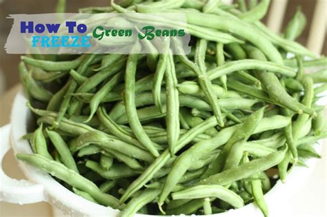 freezing beans freezing green beans healthy ideas for kids