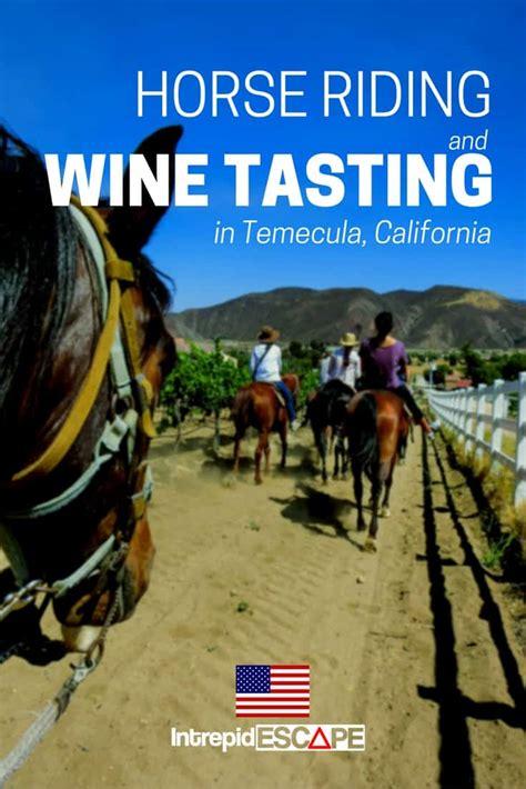 riding temecula horse wine tasting california sur intrepidescape