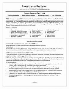 Banker Objective Resume Mortgage Banker Resume Example Resume Examples And Resume