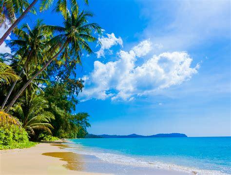 sunny day   beach hd