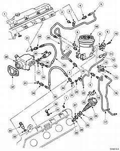 Need Location Of Diesel Fuel Injector Pump To Replace Fuel