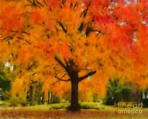 Autumn Tree by Elizabeth Coats