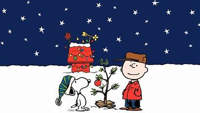 Charlie Christmas Brown Snoopy Peanuts Background Comics
