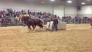 Orangeville  Horses Pull 18000 Lbs  2013