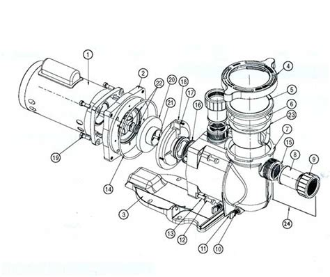 pentair motor diagram place to find wiring and