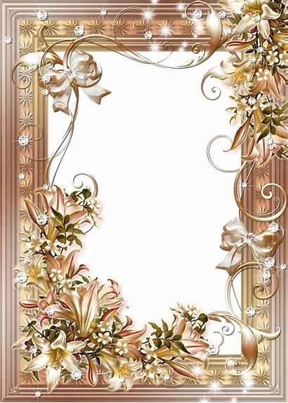 Frame Photoshop Flower Lilies Frames Transparent Lilys