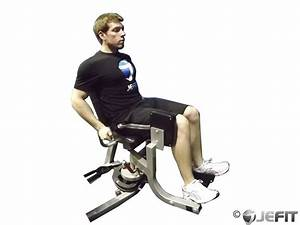 Thigh Abductor - Exercise Database   Jefit - Best Android ...