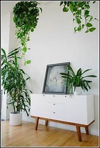 Pflanzen Wohnzimmer Feng Shui : feng shui wohnzimmer pflanzen wohnzimmer house und dekor galerie pkanj6xaan ~ Bigdaddyawards.com Haus und Dekorationen
