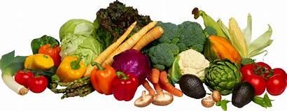Vegetables Vegetable Common