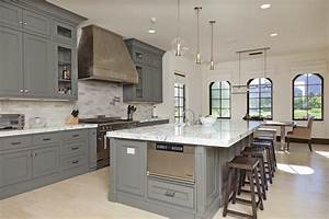 Grey kitchens kitchen contemporary with grey kitchens gray for Kitchen cabinet trends 2018 combined with wall ceramic art