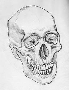 Cool Sketches of Skulls images