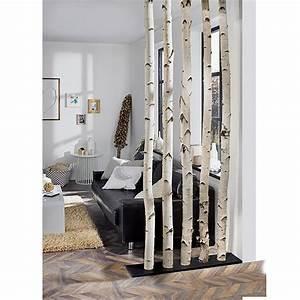 Baumstamm An Decke Befestigen : exclusivholz birkenstamm 0 8 m durchmesser ca 6 12 ~ Lizthompson.info Haus und Dekorationen