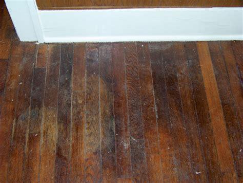 home dzine home diy   sand  seal  wooden floor