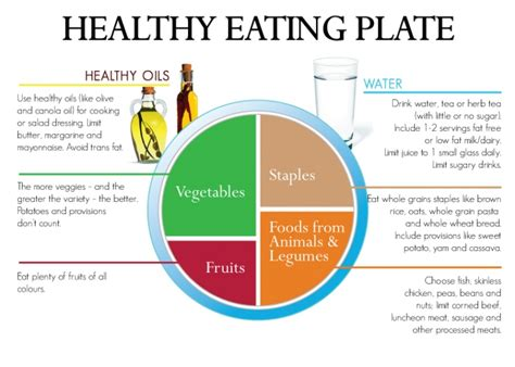 Diagram Of Healthy Plate by Diagram Of Healthy Plate Camizu Org