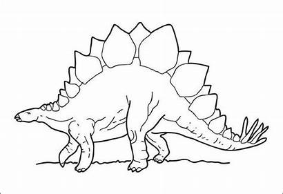Dinosaur Coloring Pages Realistic Template Printable Templates