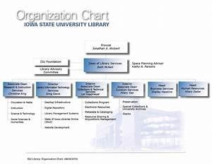Organizational Chart Starting With Provost Jonathan