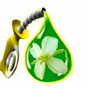 Biofuel Facts   Renewable Energy