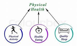 Diagram Of Physical Health Stock Photo Colourbox