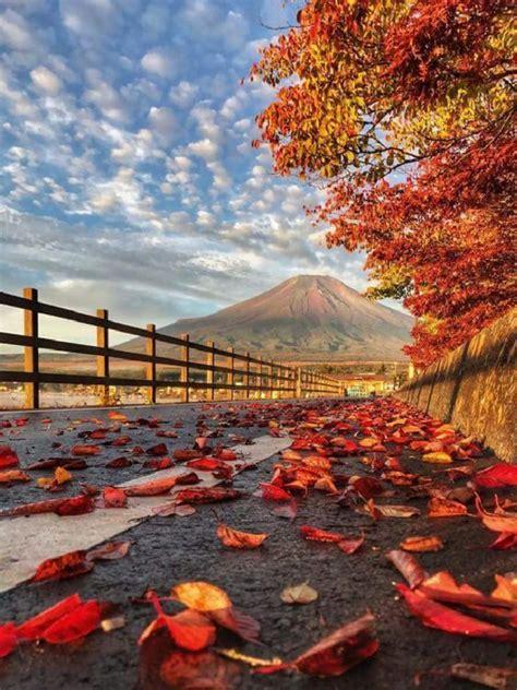 autumn  japan places   autumn mount fuji
