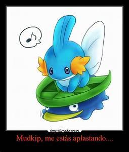 Pokemon Treecko And Mudkip Images | Pokemon Images