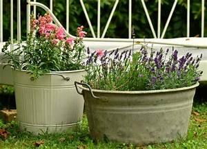 kubel fur pflanzen pflanzen fur nassen boden With französischer balkon mit garten kübel bepflanzen