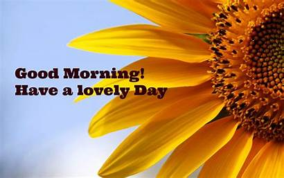 Morning Quotes Motivational Lovely Sunflower Inspirational Wishes