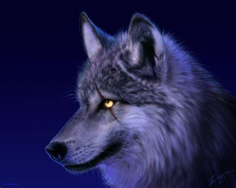 Animal Hd Wallpaper For Pc - 10 top cool animal wallpapers wolf hd 1920 215 1080 for