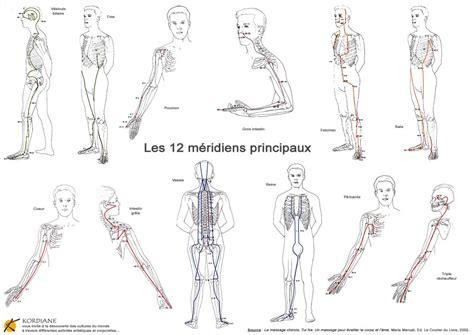 meridien du corps humain la circulation d 233 nergie dans le corps humain avec les m 233 ridiens principaux