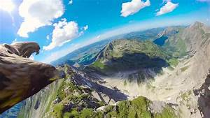 Stunning Eagle U0026 39 S Point Of View Of The Alps   Ud83d Ude0dred Bull