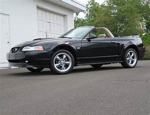 2000 Ford Mustang | OLD FORGE MOTORCARS INC.