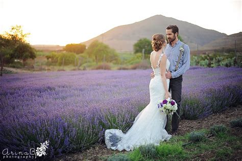 Provance Wedding Keys Creek Lavender Farm Arina B