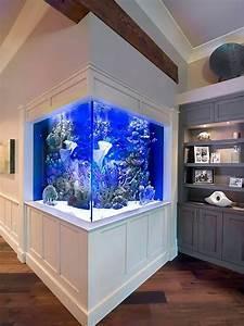 Aquarium D U0026 39 Angle