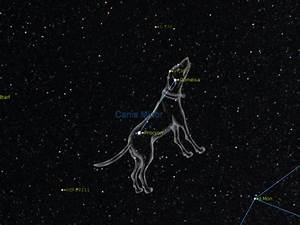 Sirius Star Constellation - Pics about space